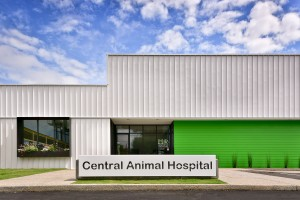 Central Animal Hospital - 1